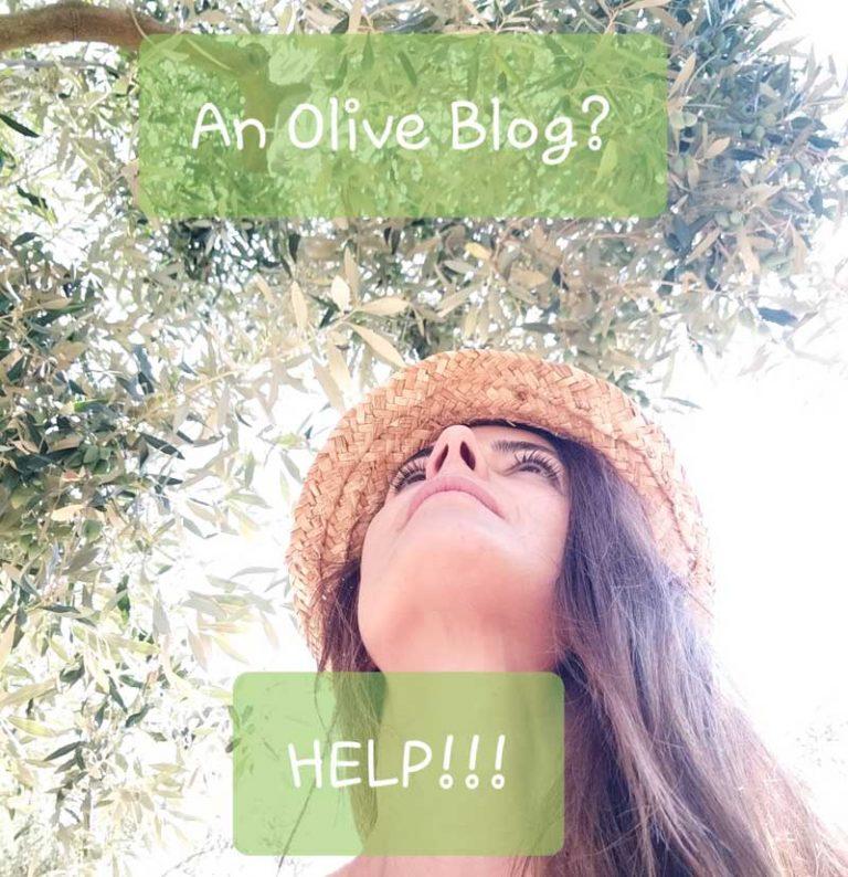 olive blog need